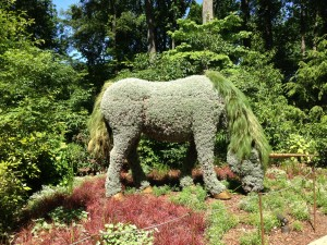 botanical gardens, unicorn topiary HD, May 2013
